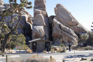 Joshua Tree National Park with Cleanup Efforts