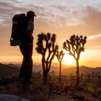 29 Palms Explorer Partnership